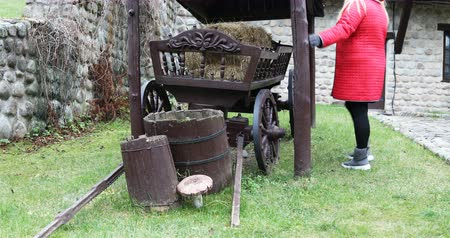 szénaboglya : The woman looks around and touches dry straw in the wooden cart.