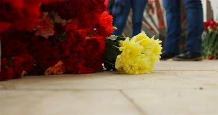 szegfű : Flowers lie on the floor near the graves of soldiers killed in the war. Stock mozgókép