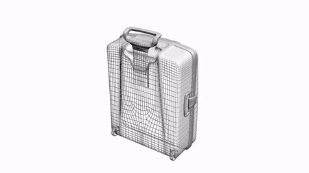 porters : Model with handle of travel suitcase,Grid,mesh,sketch,structure.