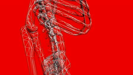 escapula : Movimiento de skeleton.anatomy,human,medical,body,skull,biology,medicine,science,bone,Grid,mesh,sketch,structure 3D, Archivo de Video