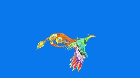 ptak : Flying Phoenix.bird,design,art,wing.