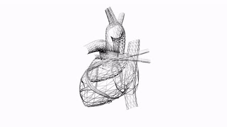 paliza : Rotación de heart.love,medical,health,pulse,medicine,care,heartbeat,Grid,mesh,sketch,structure, Archivo de Video
