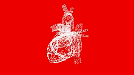 puls : Rotation of heart.love,medical,health,pulse,medicine,care,heartbeat,Grid,mesh,sketch,structure,