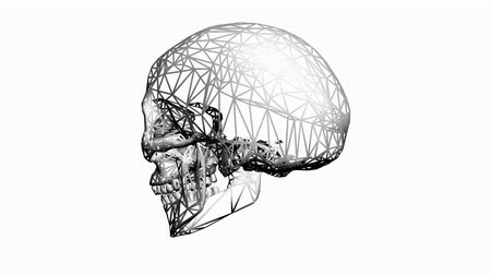 Rotation de Skull.bone,death,skeleton,illustration,design,dead,Grid,mesh,sketch,structure 3D, Vidéos Libres De Droits