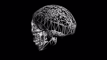 tatuagem : Rotation of 3D Skull.bone,death,skeleton,illustration,design,dead,Grid,mesh,sketch,structure,