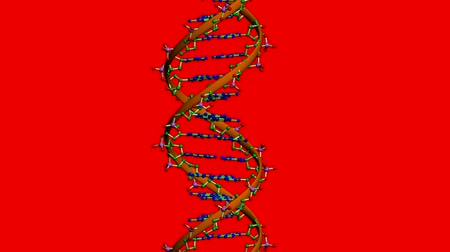 Rotation de DNA.medicine,biology,science,research,medical,helix,biotechnology,molecule,molecular 3D,