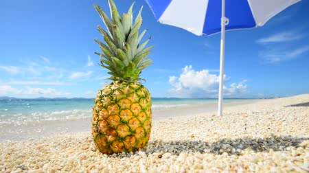 paraíso : Exotic tropical fruit on the sandy beach