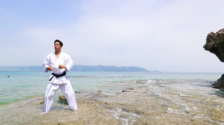 Young man practicing karate at beach