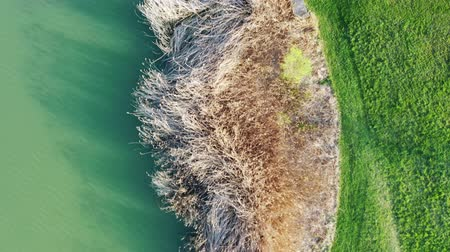 Aerial view of a lake and trees in Magny-le-Hongre Wideo