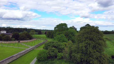 kanon : De Battle Of The Boyne veld in County Louth, Ierland. Stockvideo