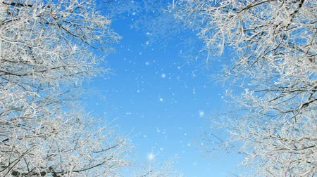 icy : Flying through winter scene loop Stock Footage