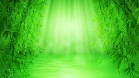 ekologia : Magical green leaves and water
