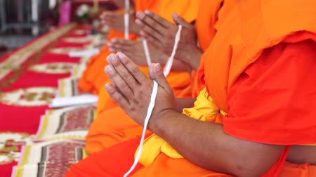 budismo : buddhist monks praying Vídeos