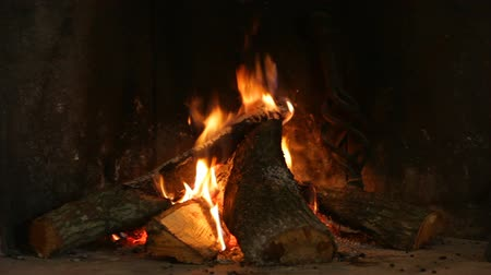 A warm fire in a chimney. Burning wood in the fireplace and the flames Vídeos