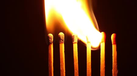 Ignition matches in sequence, metaphor of influence, chain reaction, domino effect. Vídeos