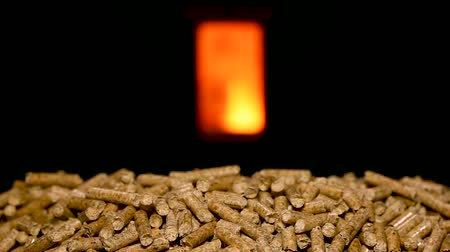 Wood pellets with combustion chamber in the background.