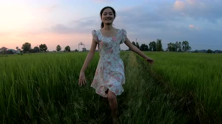 rýže : Beautiful girl running slow motion in the rice field at sunset Dostupné videozáznamy