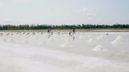 Farmer in the salt field