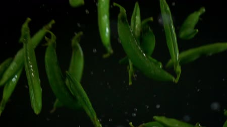 sementes : Green peas pouring slow motion