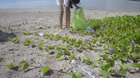 collected : Young girl collecting garbage on the sandy beach into green plastic bag, Plastic bottles are collected on the beach, Volunteer cleaning the beach, Environmental awareness concept.