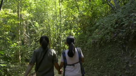 andar : Rear view of mother and her daughter are walking hand in hand together on hiking trail along the stream that flowing from tropical rain forest in thailand.
