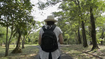 Rear back view of asian woman with backpack and wearing straw hat is walking and taking picture with mobile phone in public park during summer. Stock Footage