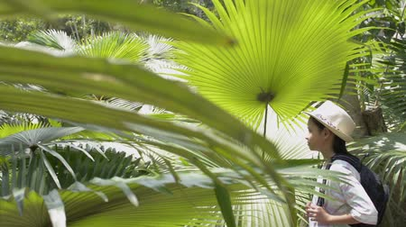 Asian cute girl with backpack enjoying her time in the tropical palm forest during summer in phuket. Stock Footage