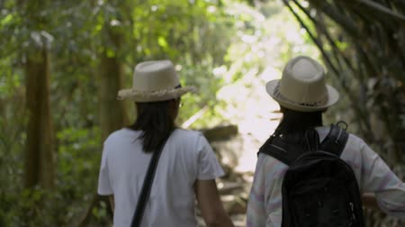 Rear view of mother and her daughter are walking hand in hand together on hiking trail along together in tropical rain forest in thailand.