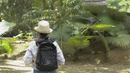 Rear view of asian girl with backpack walking in tropical natural park in thailand.