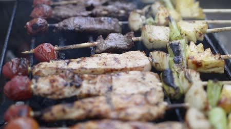 špejle : Chicken and beef meat pieces being fried on a charcoal grill. Frying grilled pieces of meat during picnic.