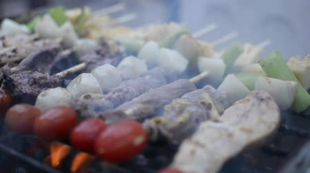 špejle : Chicken, beef and fish meat pieces being fried on a charcoal grill. Frying grilled pieces of meat during picnic.