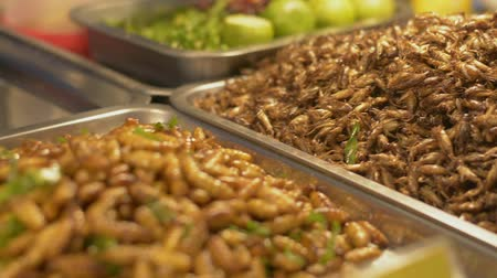 silkworm : Close up cooked insects and worms in metal tray at local food market. Iconic street food in thailand. Stock Footage
