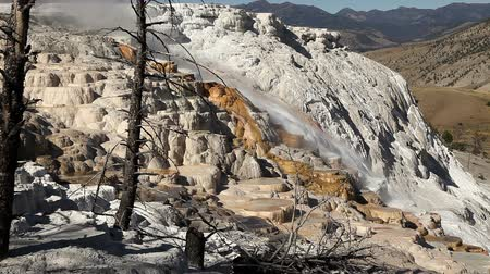 гейзер : Mammoth Hot Springs Стоковые видеозаписи