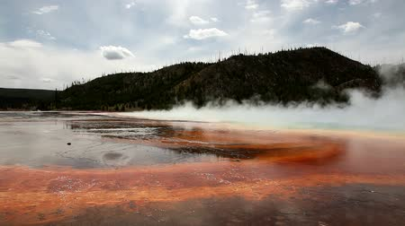 rook : Thermische hot zwembaden in Yellowstone