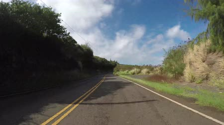 гавайский : POV car driving in Maui Hawaii