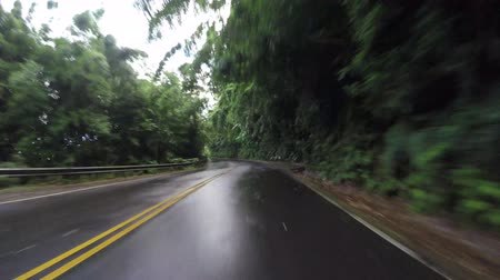 luz do dia : POV car driving in Maui Hawaii