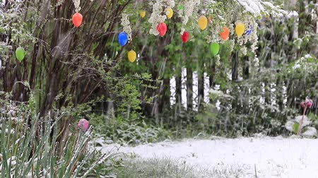 value clips : Shrub with colorful Easter eggs, snowing scenery at easter holiday.