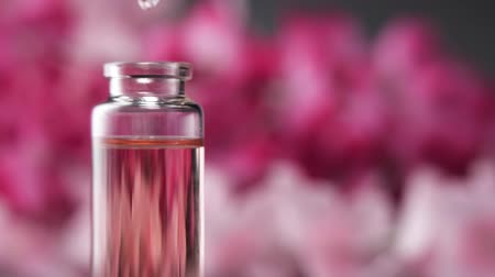 homeopati : Blend of essential oils. Making some aroma liquids, perfume. Drops falling from pippet to little glass bottle. Slowmotion. Stok Video