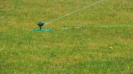 dmuchawiec : A sprinkler waters the lawn, slow-motion. Wideo