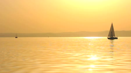 yelkencilik :   Sailing boat at dusk Stok Video