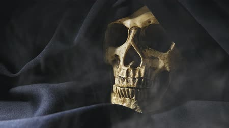 csontok : Human skull in the smoke Stock mozgókép