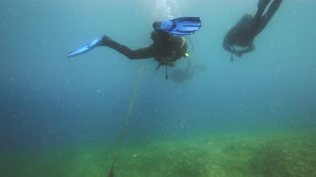 mergulhador : Divers underwater near coral reef