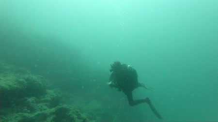 fundo : Slow motion footage of diver turning around