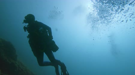 mergulhador : Divers underwater swimming in the sea Stock Footage