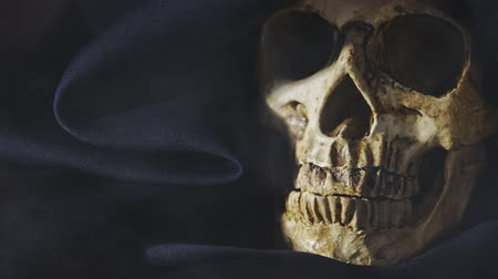 csontok : Closeup photo an old skull covered in black robe Stock mozgókép