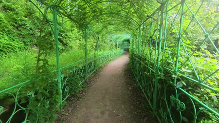 tünel : Green path in beautiful garden motion footage