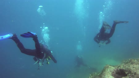 výbava : Divers underwater swimming in the sea Dostupné videozáznamy