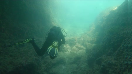 tünel : Underwater footage of Divers in the water Stok Video