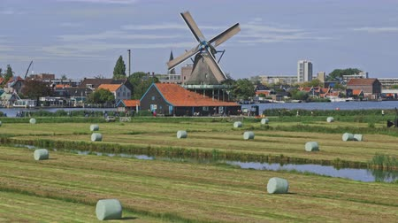 nederlands : Dutch windmills in Netherlands closeup footage