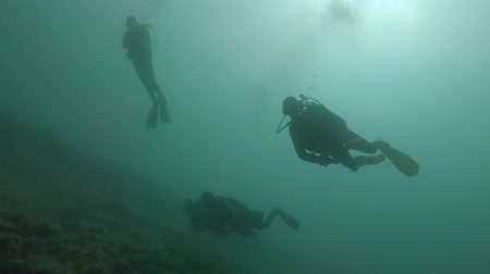 výbava : Underwater foorage of Divers in the water